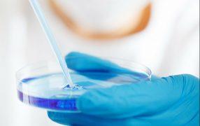 PICSIは今までのICSIに比べて不妊治療患者の治療結果を改善できるのか?