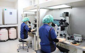 子宮内膜着床能検査のモニター募集