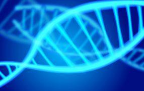 DNAメチル化と胚の質との関連