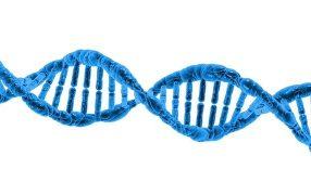 禁欲期間が長いと精子DNAが損傷する