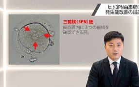 Oak Journal Review :ヒト3PN由来胚の発生能改善の試み