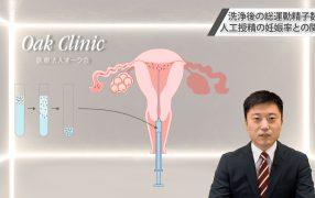 Oak Journal Review:洗浄後の総運動精子数と人工授精の妊娠率との関連